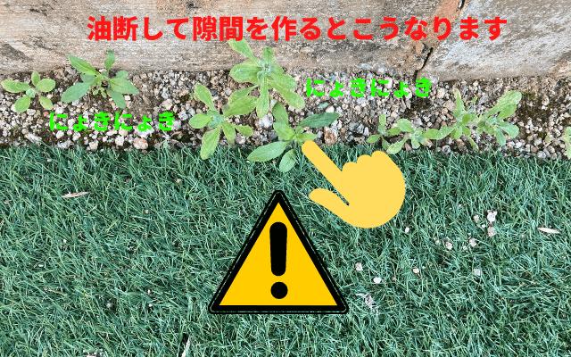 人工芝は防草シート付きがおすすめ!8